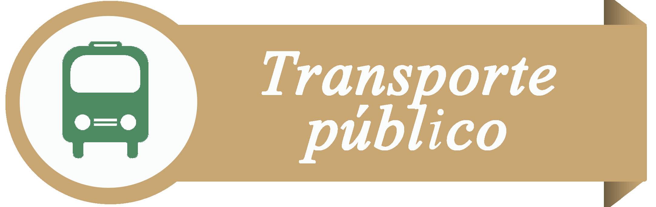 Servicio Transporte Público  1