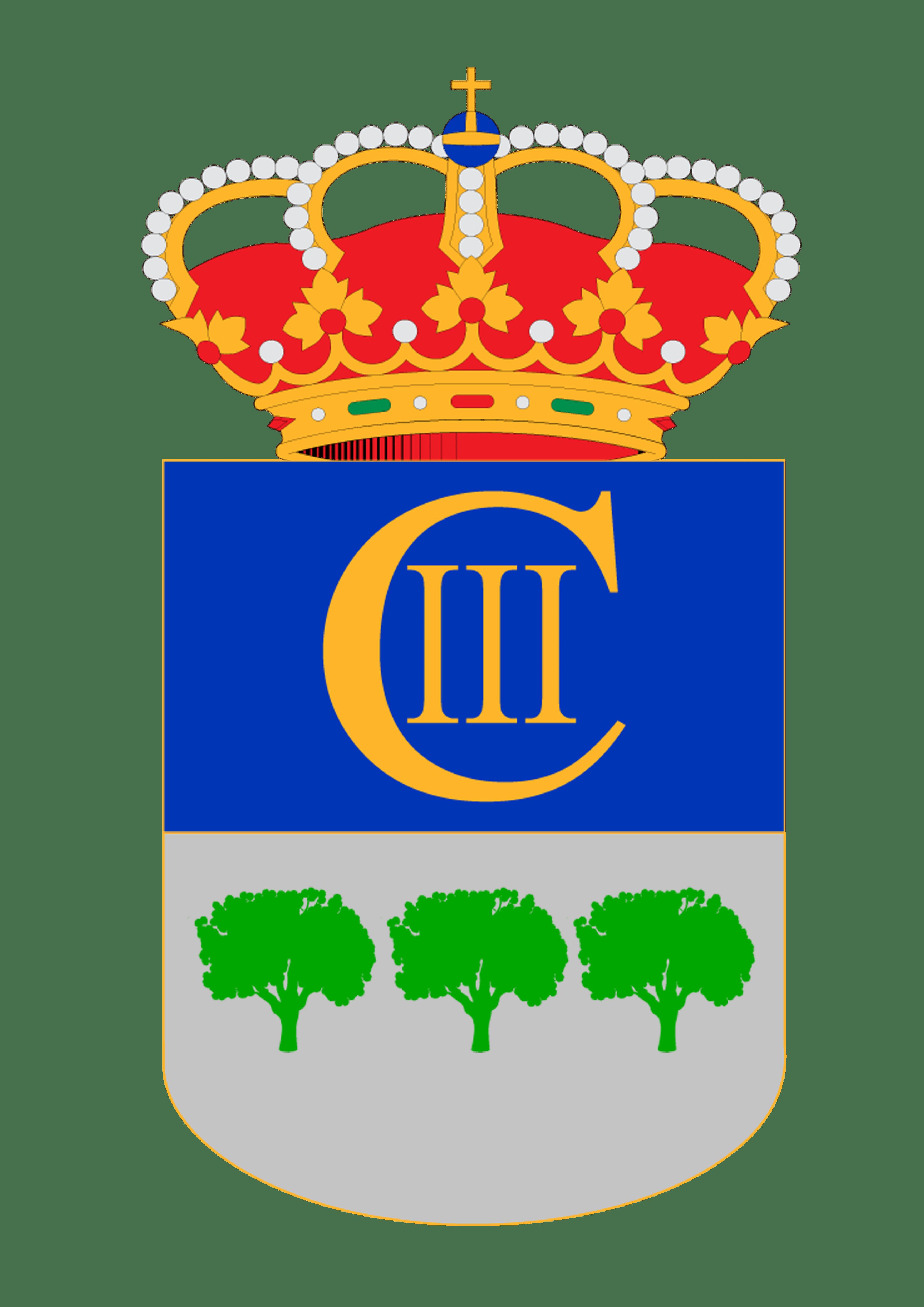 SESIÓN CONSTITUTIVA DEL AYUNTAMIENTO DE LA CARLOTA MANDATO 2019-2023 1