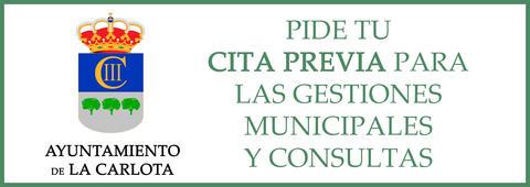 Cita previa para las gestiones municipales y consultas